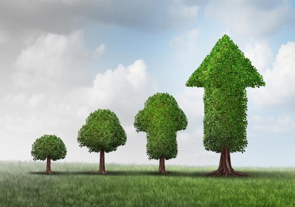 Entreprise familiale : Succession et gouvernance