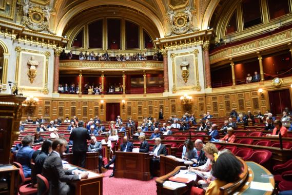 Le Sénat vote l'interdiction de la destruction des invendus non alimentaires