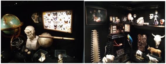 Cabinet de curiosités, Photos B.Coty