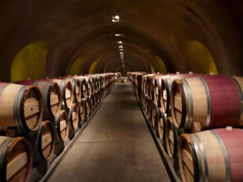 Le vin italien sur les talons du vin français