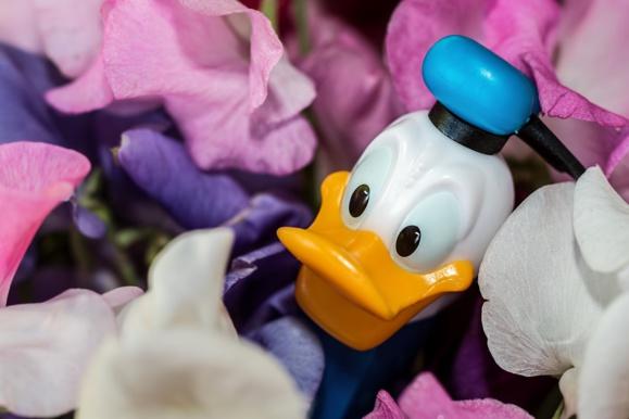 Netflix : un accord d'exclusivité pour diffuser le catalogue Disney