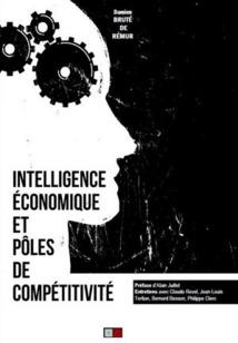 Intelligence économique et pôles de compétitivité : l'éclairage de Damien Bruté de Rémur