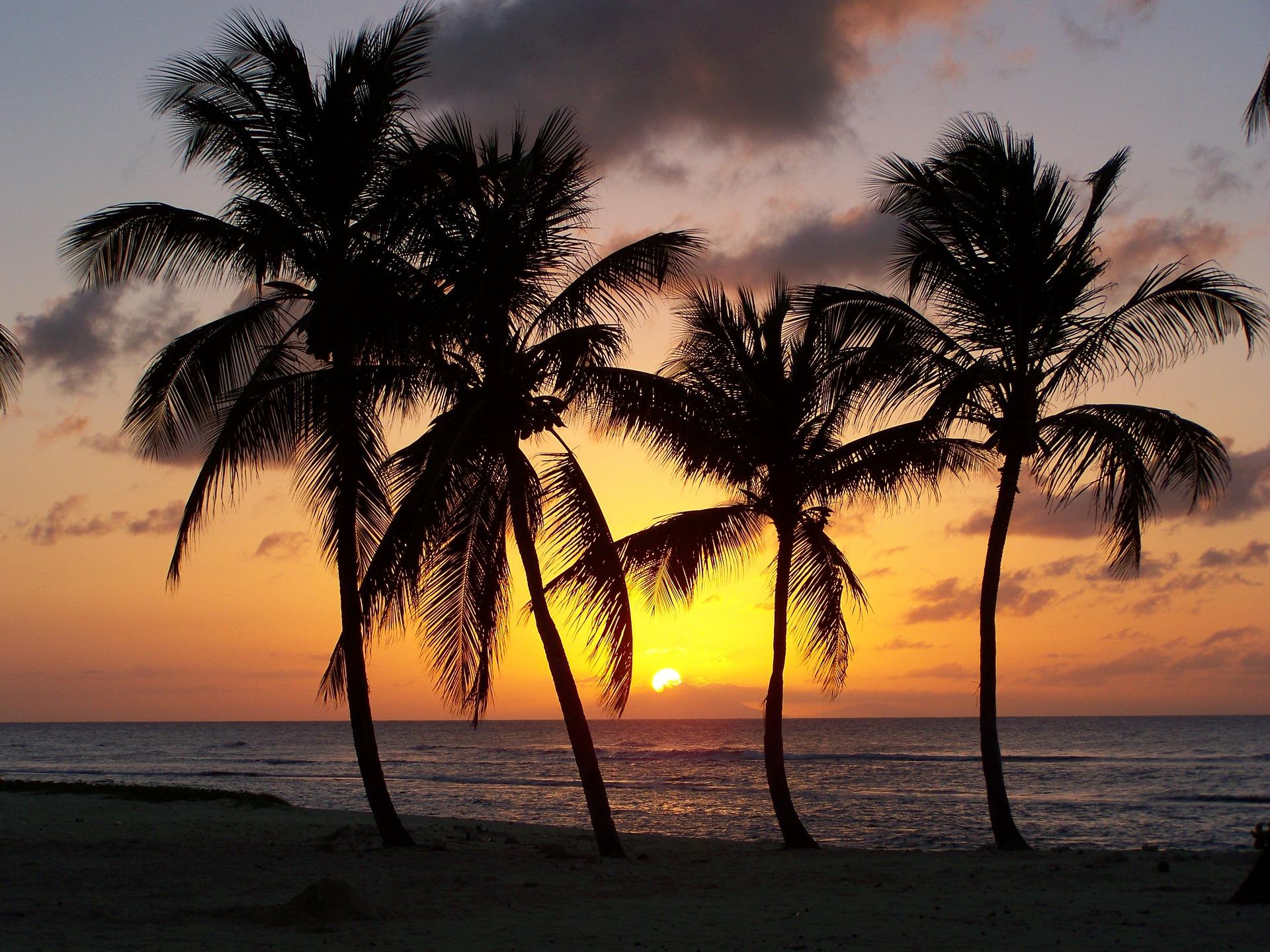 La loi « Égalité réelle Outre-mer » est adoptée