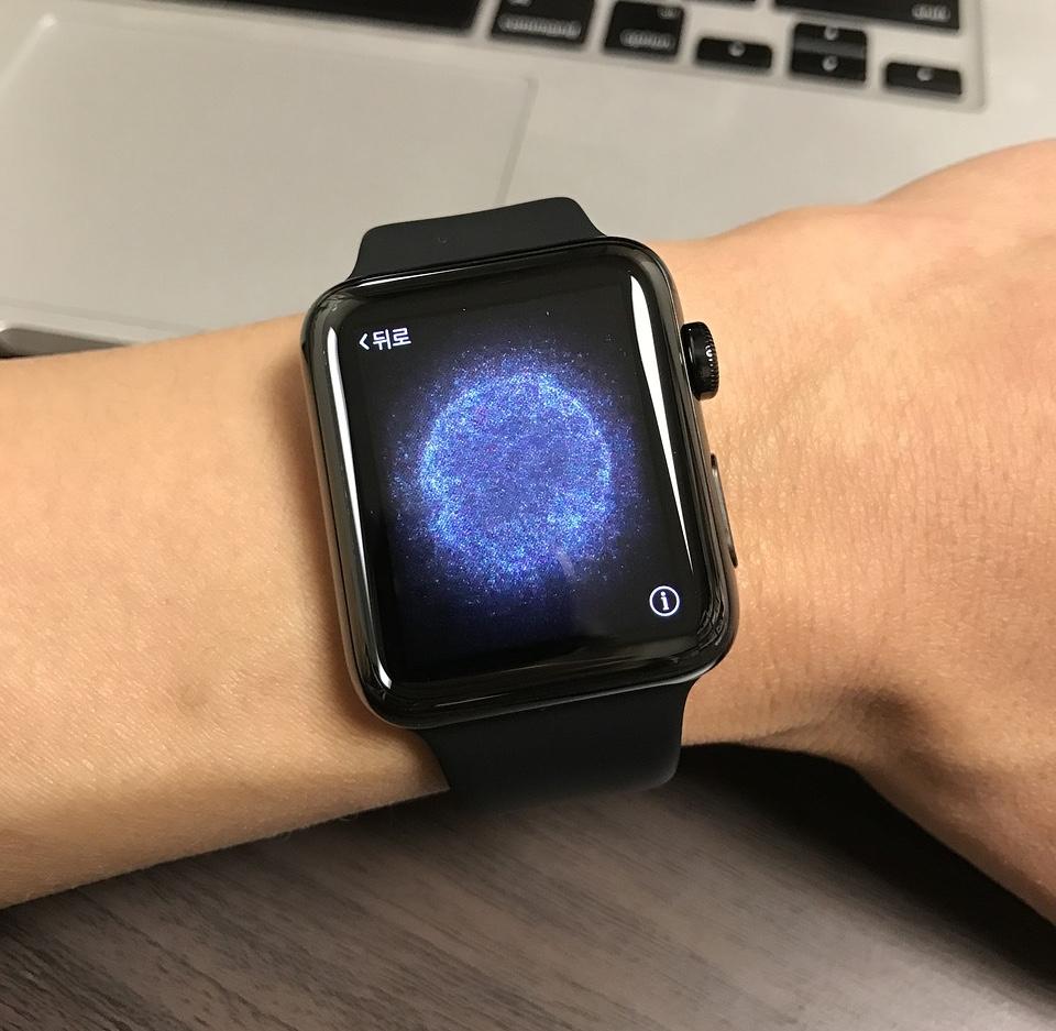 Apple, premier sur le marché des bracelets connectés
