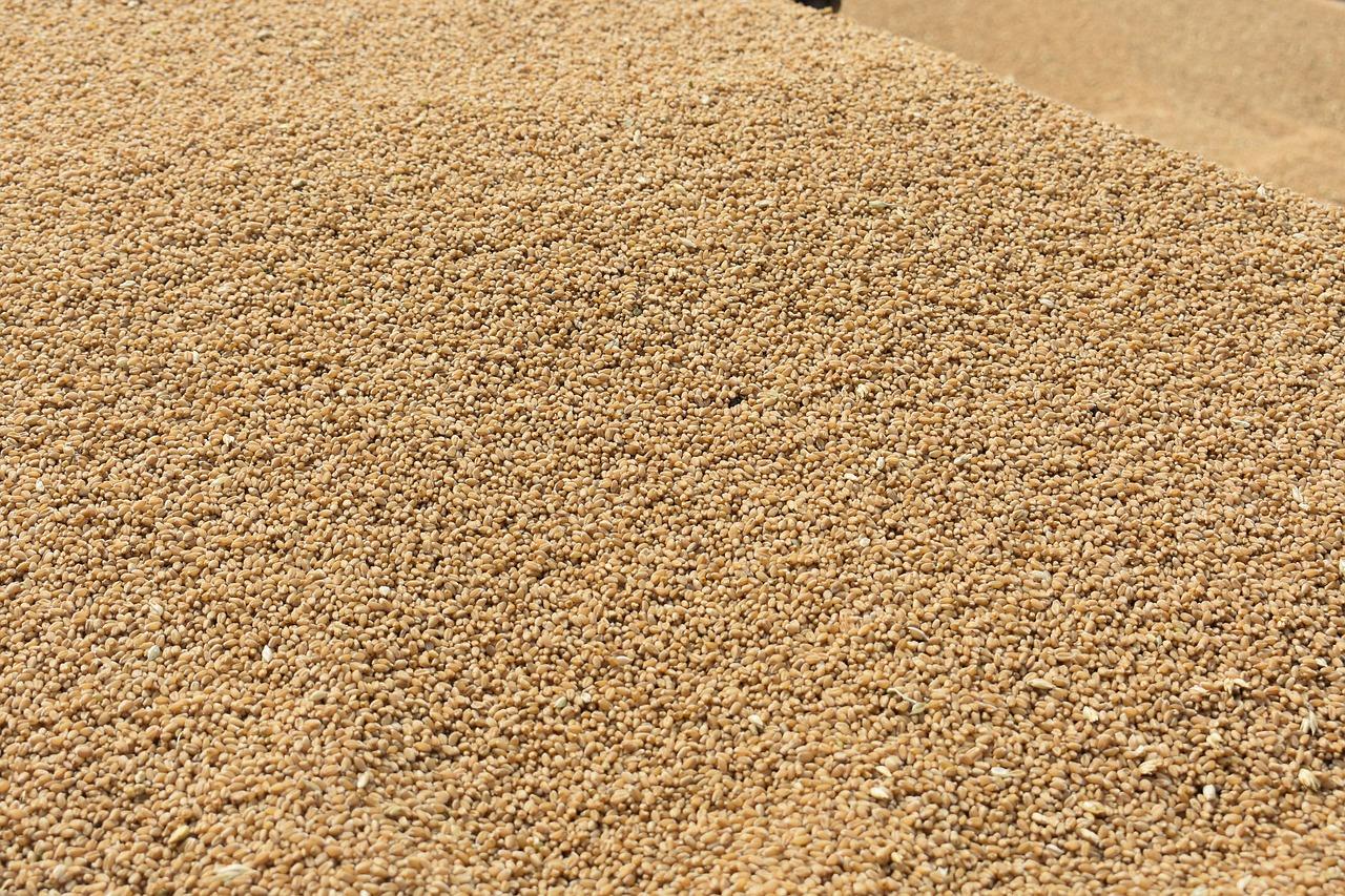 Feu vert européen pour l'acquisition de Monsanto par Bayer
