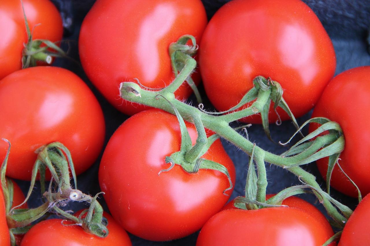 1,1 milliard pour aider l'agriculture bio en France