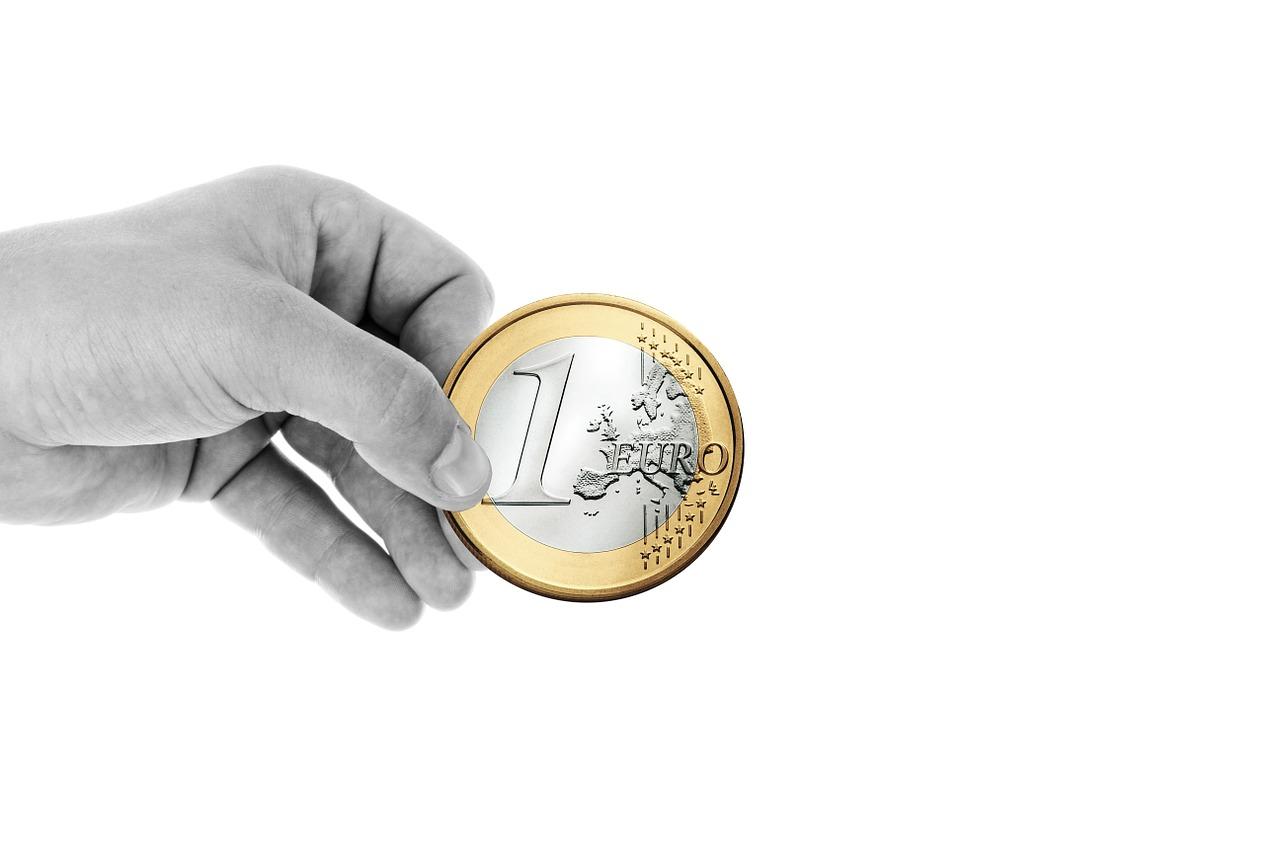 L'euro a permis une hausse de 20% du pouvoir d'achat des Français