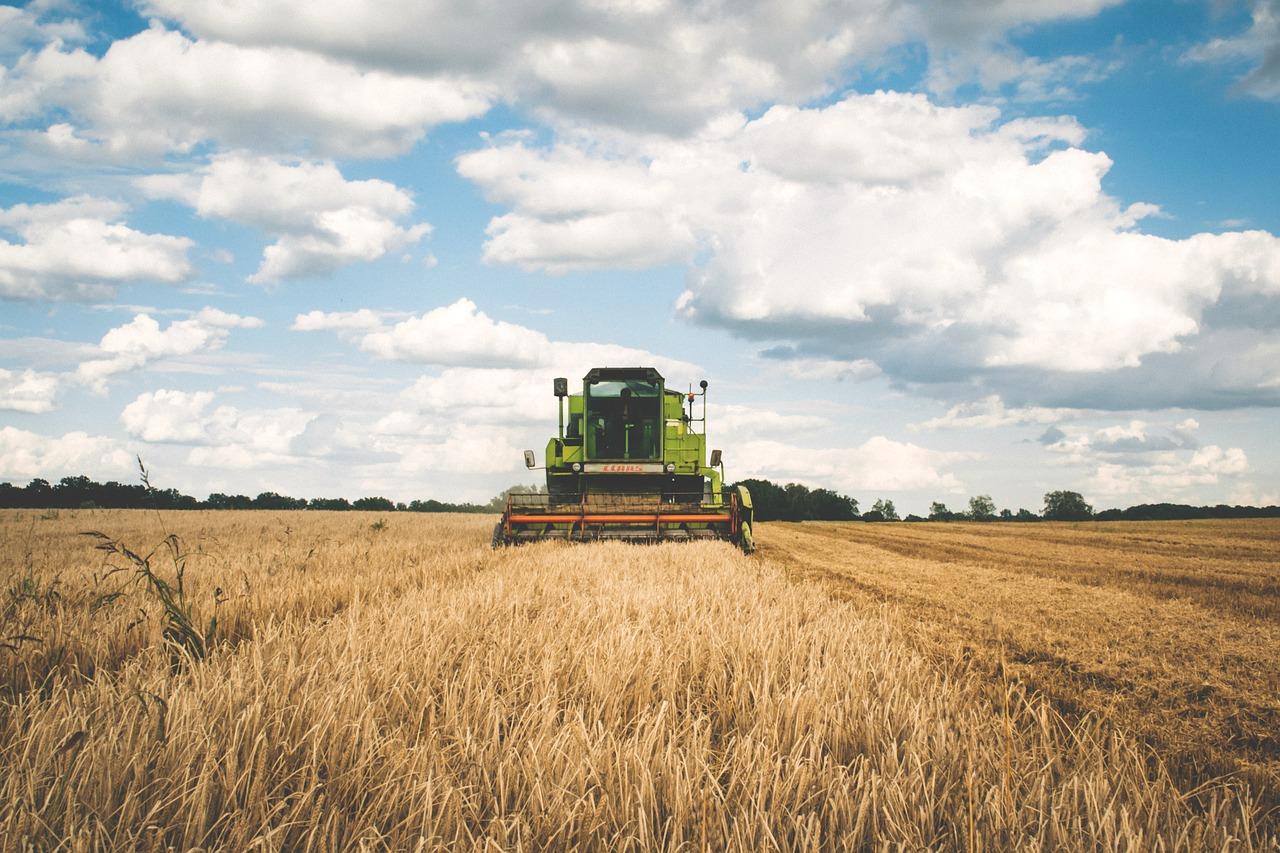 Agriculture : la France va importer davantage qu'elle n'exporte en 2023