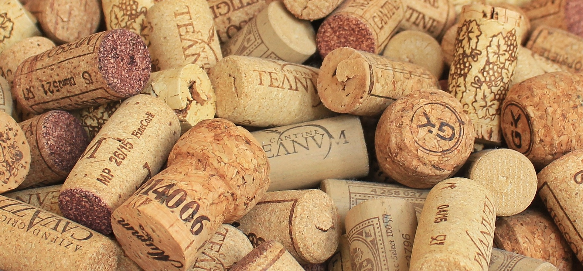 Quelle santé pour le secteur viticole français ?