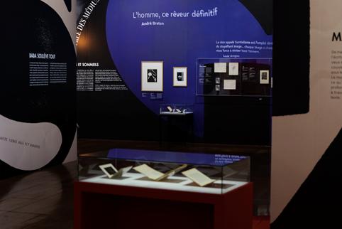 """Exposition """"L'invention du Surréalisme"""" © BnF"""