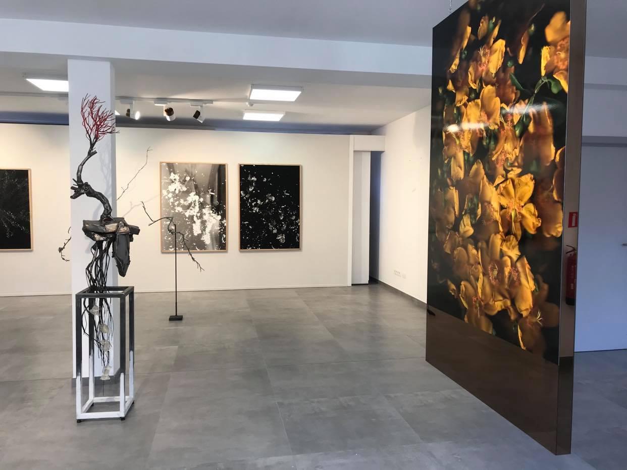 Portrait d'Artiste : Entretien avec Marrio Ferretti