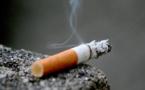 En surproduction, Japan Tobacco va fermer 4 usines
