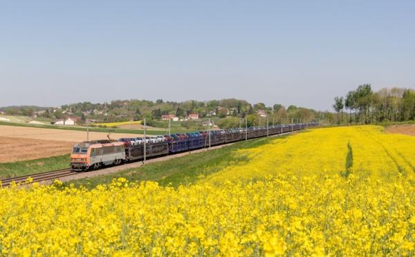La SNCF officialise la suppression de 7 destinations auto-train sur 12