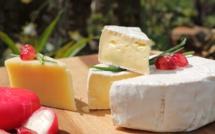 Camembert de Normandie : un seul nom pour tout le monde