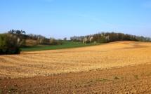 La PAC va diminuer pour les agriculteurs : colère en France