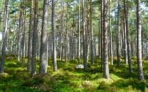 La France sera en déficit écologique le 5 mai