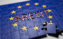 Brexit : enfin une proposition commune de Theresa May
