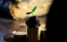 Les actionnaires ont été très bien servis au deuxième trimestre
