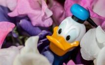 Picsou Magazine abandonne les gadgets en plastique