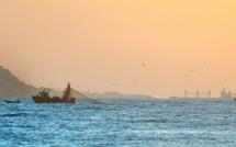 Pêche en eaux profondes : Intermarché cède un peu face aux critiques