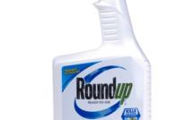 Ségolène Royal veut mettre fin à la commercialisation en vente libre du Roundup